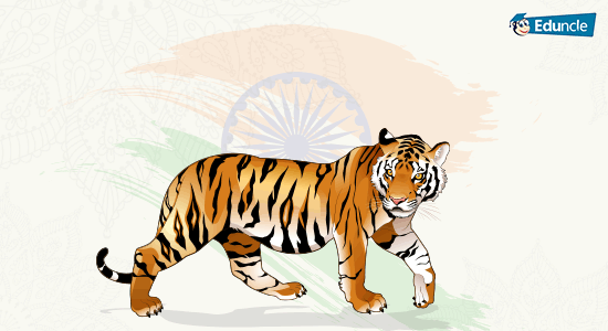 National Animal of India Tiger