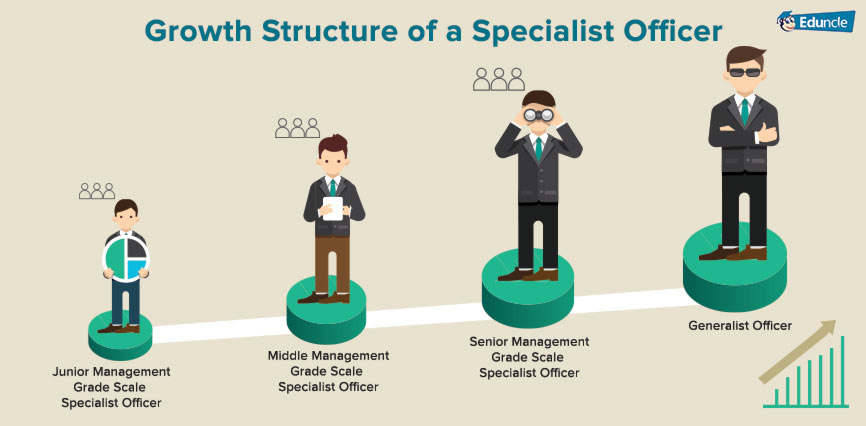 Growth Structure of an IT Specialist Officer