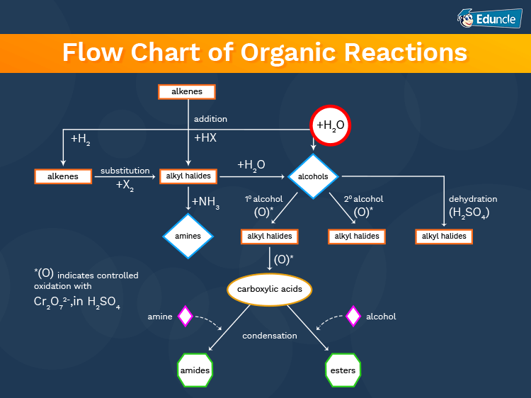 Flow-Chart-of-Organic-Reactions